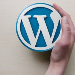 wordpress-guide-670x335