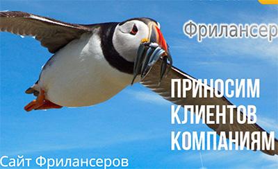 Фрилансер в Минске
